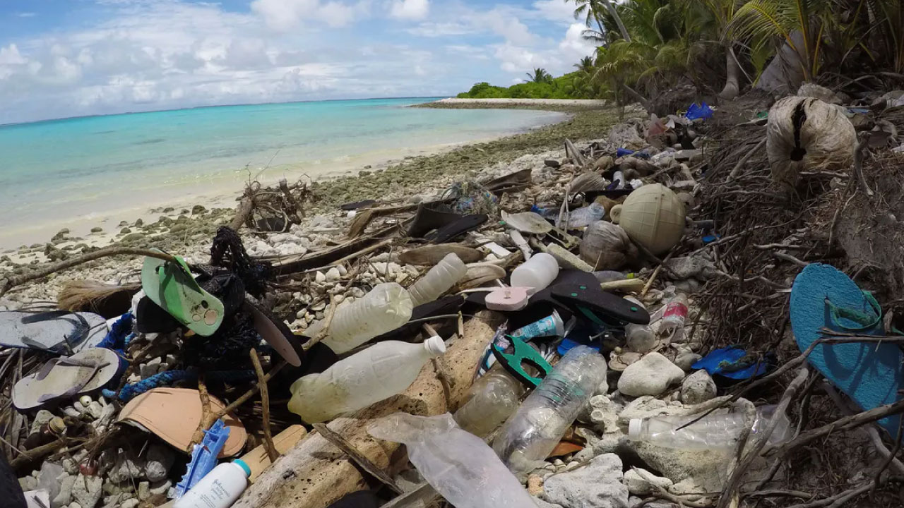 Island solutions: what to do with all that trash?