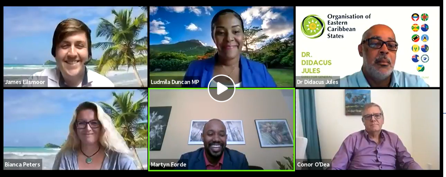 Report: The Economic Future of the Caribbean: Life After COVID-19 Webinar